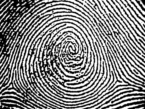 Identity Thumbprint